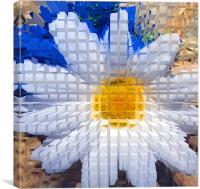 Sunflower , Canvas Print