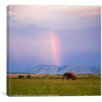 Rainbow.....beyond horizon..., Canvas Print