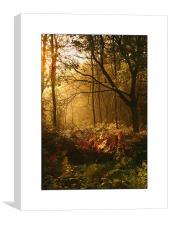 Oxford Summer Morning , Canvas Print