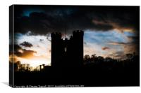Arundel Park, West Sussex, Canvas Print