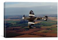 Mk19 Spitfire