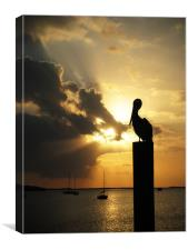 Pelican on the post, Canvas Print