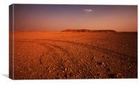 Tracks in the desert, Canvas Print