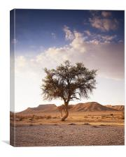 The One Tree, Canvas Print
