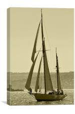 Sailboat, Canvas Print
