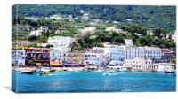Capri Island, Canvas Print