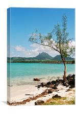 Ile aux Cerfs, Mauritius, Canvas Print