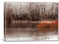 Danube, Canvas Print