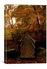walkway, Canvas Print
