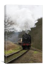 3058_28992 Steam Train, Canvas Print