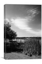 A walk on the Danube River, Canvas Print