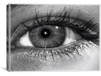 Behind the Hazel Eye, Canvas Print