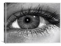 Behind the Hazel Eye