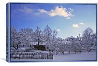 Winter Rime