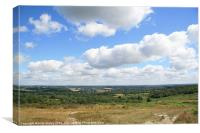 Ashdown Forest, Canvas Print