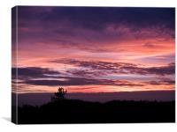 Norfolk Sunset - 2, Canvas Print