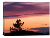 Norfolk Sunset - 3, Canvas Print