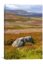 Scottish Moorland, Canvas Print