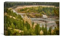The Hoodoos of Banff, Canvas Print