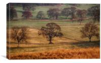 Ullswater Valley, Canvas Print