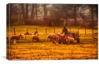 Feeding the flock, Canvas Print