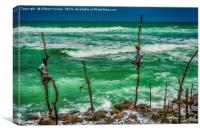 Stilt Fishermen In Sri Lanka, Canvas Print