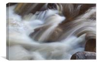 Au Sable River, Adirondacks, Canvas Print