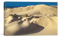 Lake Michigan Dune, Canvas Print