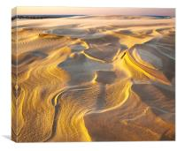 Eroded Lake Michigan Dune, Canvas Print