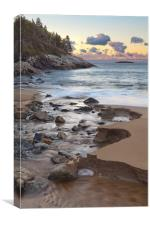 Creek at Sand Beach, Maine, Canvas Print