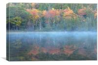 Bubble Pond Reflection, Maine, Canvas Print