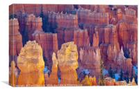 Far and Near, Bryce Canyon National Park, Canvas Print