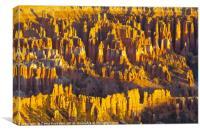 Amphitheater, Bryce Canyon National Park