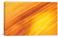 Southern Utah Sandstone, Canvas Print