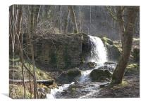 Hermitage waterfall, Canvas Print
