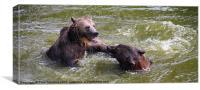 2 Bear Mambo, Canvas Print