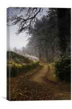 Winter Trail at Linacre Reservoir, Canvas Print