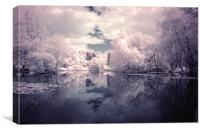 Lilac Reflections in Watermead Park, Canvas Print