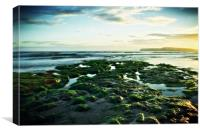 Freshwater Bay, Isle of Wight, Canvas Print