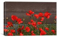 Red Poppies By The Roadside, Canvas Print