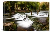 Kearsney Abbey Waterfall, Canvas Print