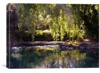Dappled pond, Canvas Print