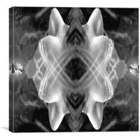 Nasal Wave, Canvas Print
