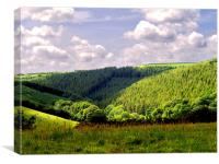 Devon Landscape, Canvas Print