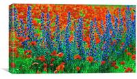 Wild Lupins and Poppies, Canvas Print
