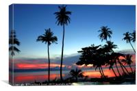 palm trees at sun set Koh Phangan Thailand, Canvas Print