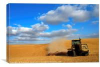 wheat Harvesting, Canvas Print