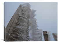 Iced Fence, Canvas Print