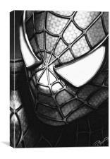 My friendly neighbourhood spiderman, Canvas Print