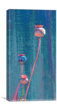 Tall Poppies, Canvas Print